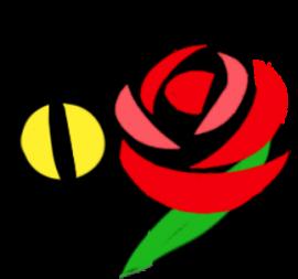ぬっこ薔薇